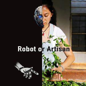 Robot or Artisan?