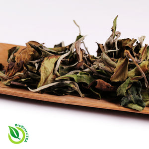 Wild Artisan Moonlight White - Wild Tea Qi Official Website