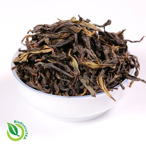 Ancient Single Tree Phoenix Oolong - Wild Tea Qi Official Website