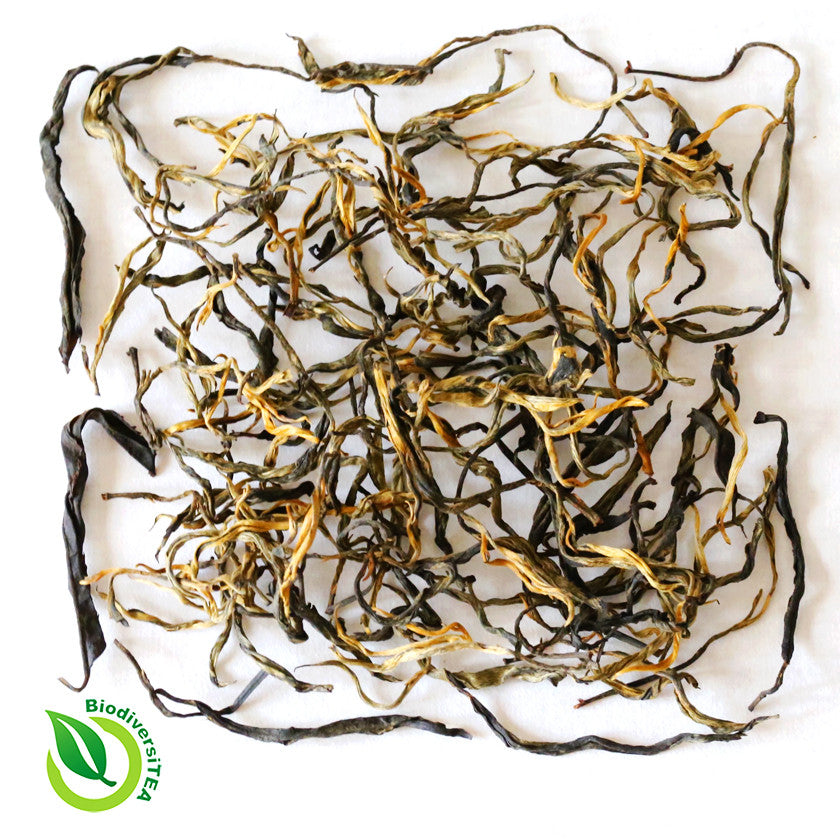 Wild Tea Qi Ancient Artisan Yunnan Black Tea
