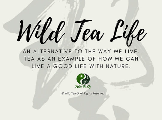 Wild Tea Life - Ebook FOR FREE - Wild Tea Qi Official Website