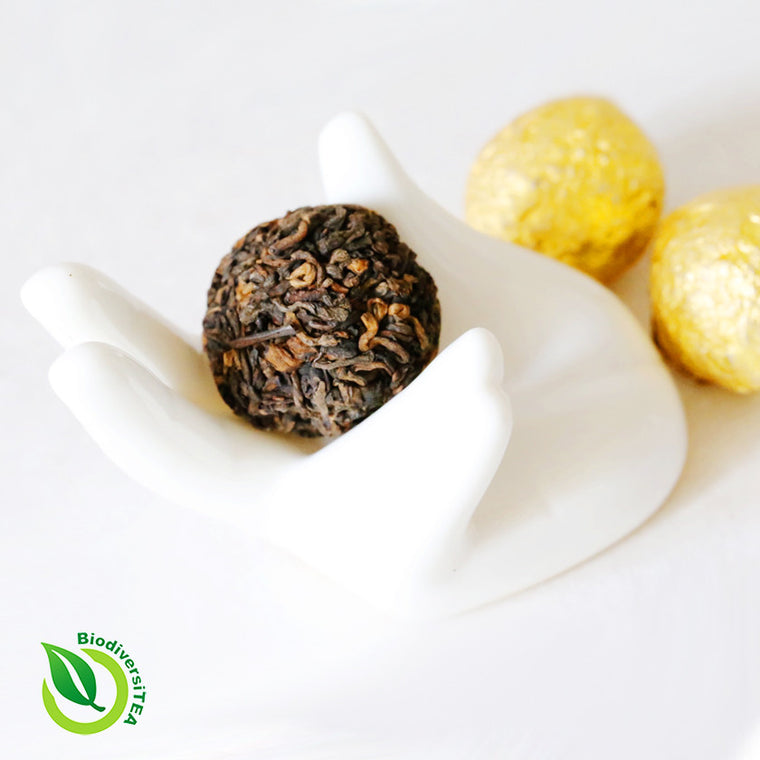 Wild Tea Qi Ancient Phoenix Balls Fermented Puer Tea