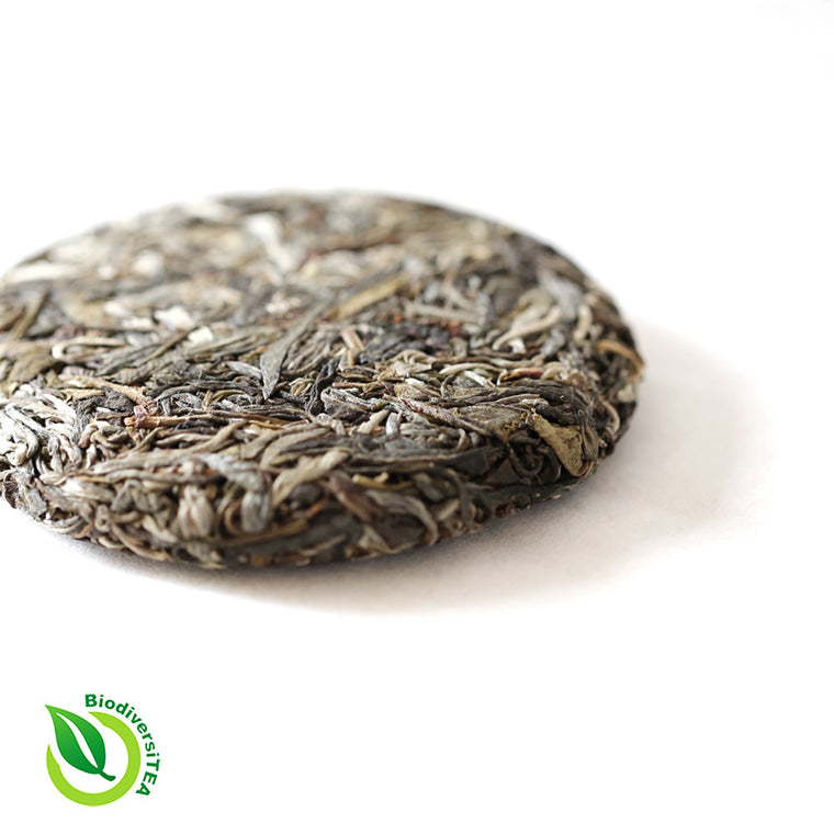 Wild Tea Qi Rattan Qi Tea Ancient Tea Tree Raw Puer