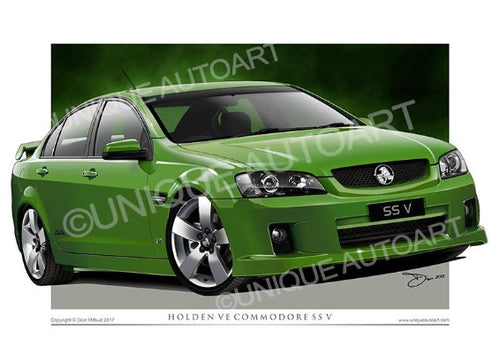 VE SS COMMODORE- ATOMIC