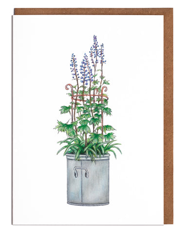Delphiniums Card