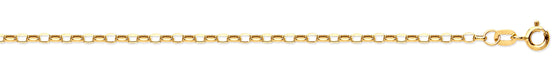 Yellow Gold Hollow Belcher Chain TGC-CN0461