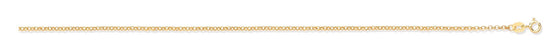 Yellow Gold Hollow Belcher Chain TGC-CN0583