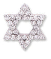 18ct White Gold 0.80ct Diamond Star of David Pendant TGC-DPD0352
