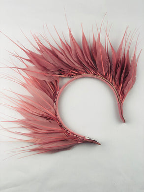 Soft Pink Feathered Crown