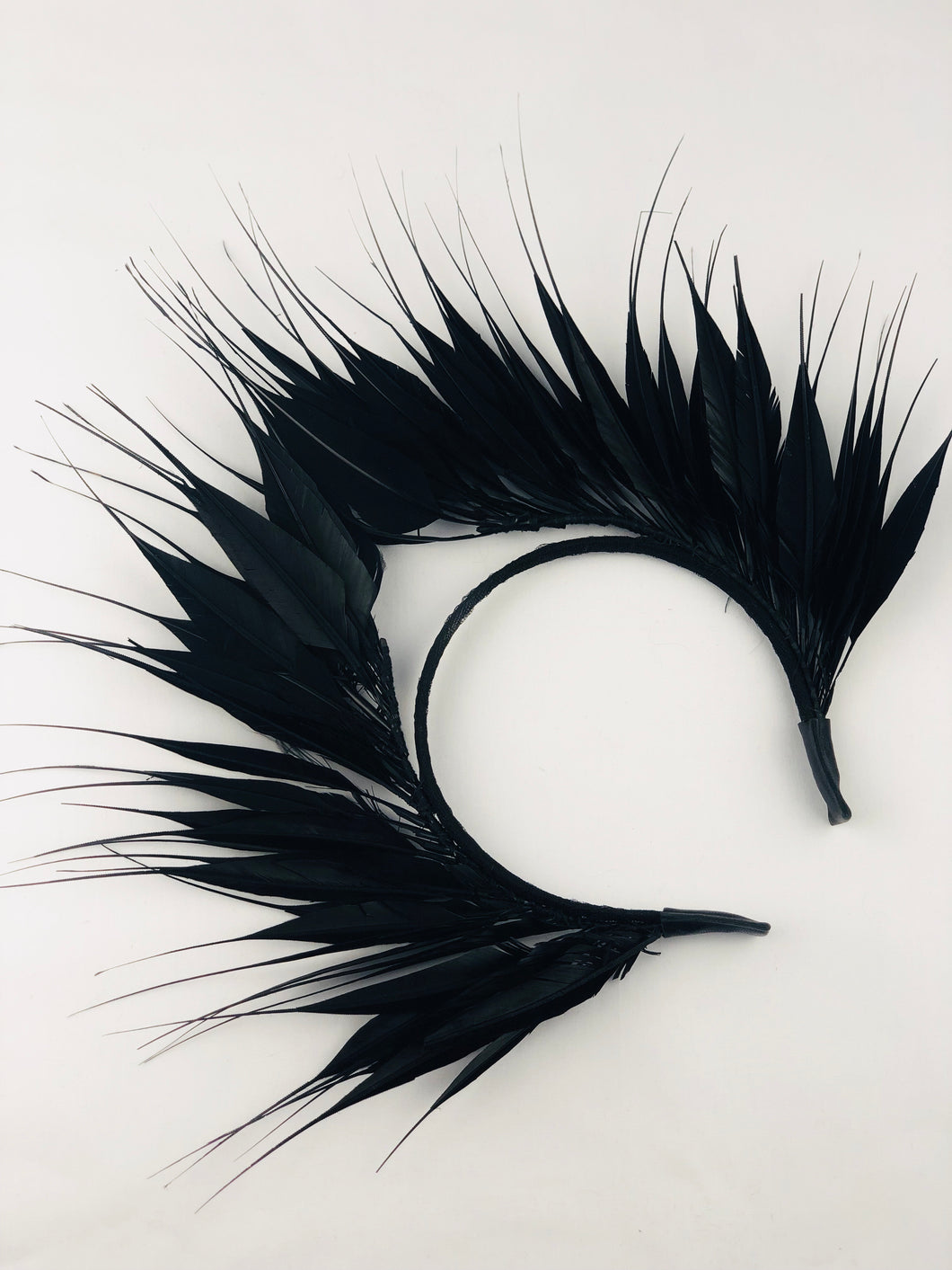 Black Feathered Crown