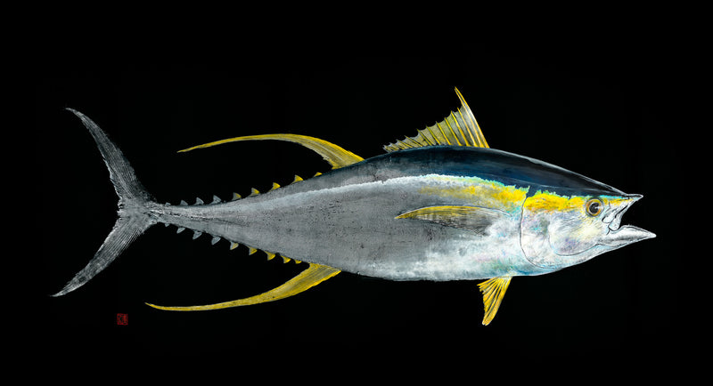 LIMITED EDITION - Yellow Fin Tuna Sealed Canvas 1/10