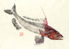 Gurnard Colour Print