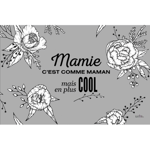 "Coussin ""Mamie plus cool"""