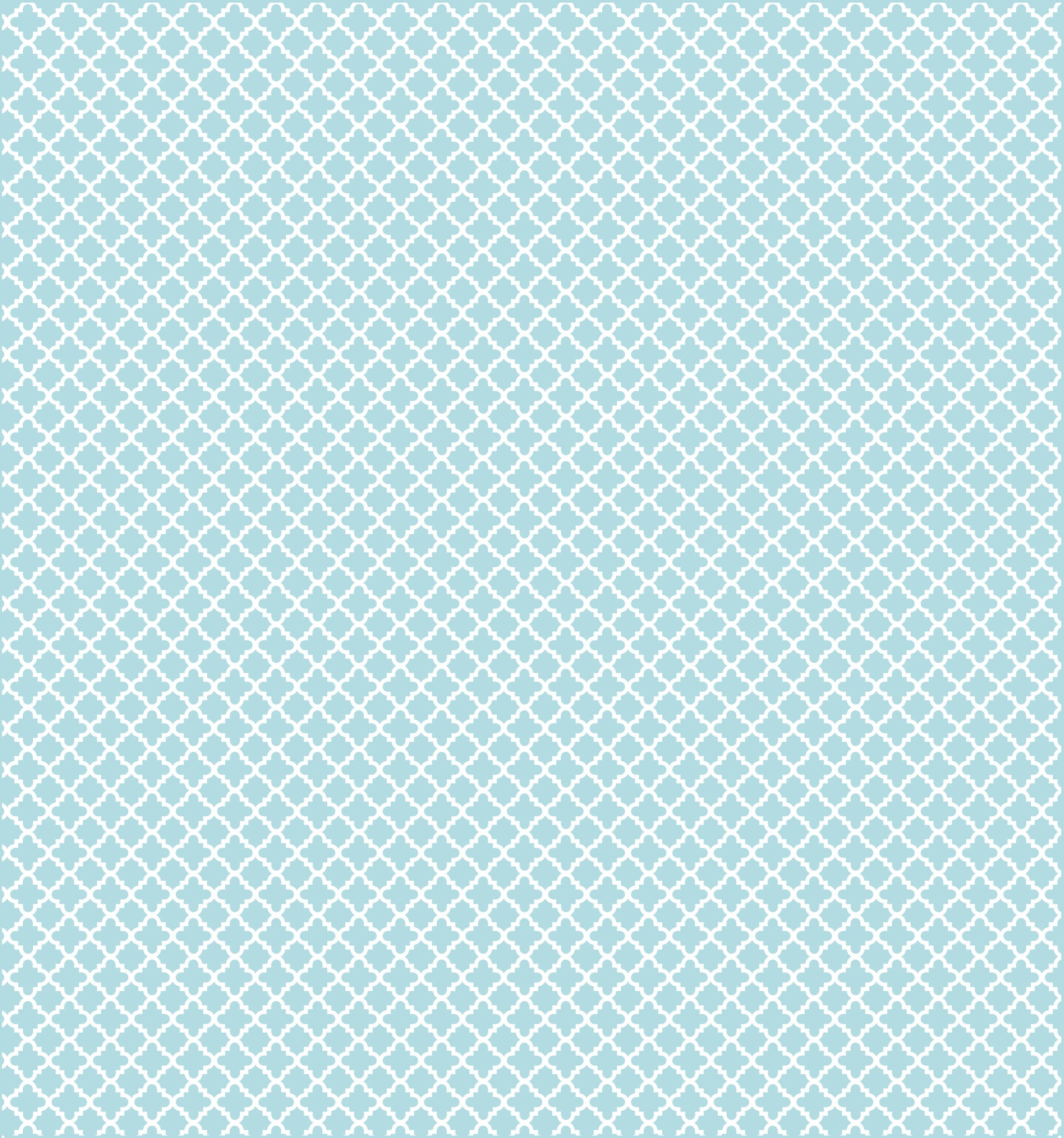 Cotton Flannel Print Trellis Aqua