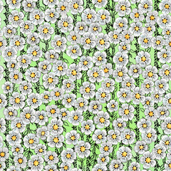 "Stitch & Sparkle Maries Picnic-Daisy Light Green 100% Cotton Fabric 44"" Wide, Quilt Crafts Cut by The Yard"