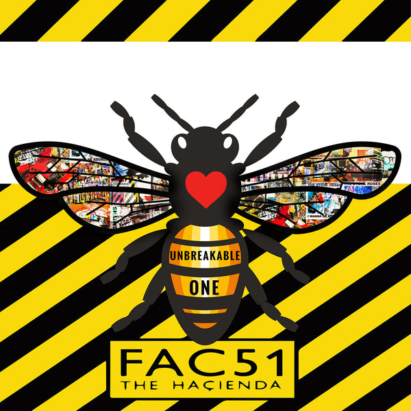 hacienda, fac251, hacienda fac 251, peter hook, rowetta, manchester bee, we stand together, manchester evening news,manchester, manchester art, manchester artist, sasha ray art
