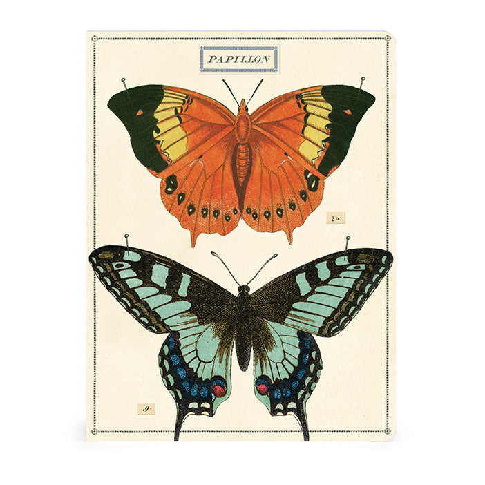 Birds and Butterflies Notebook Set of 2