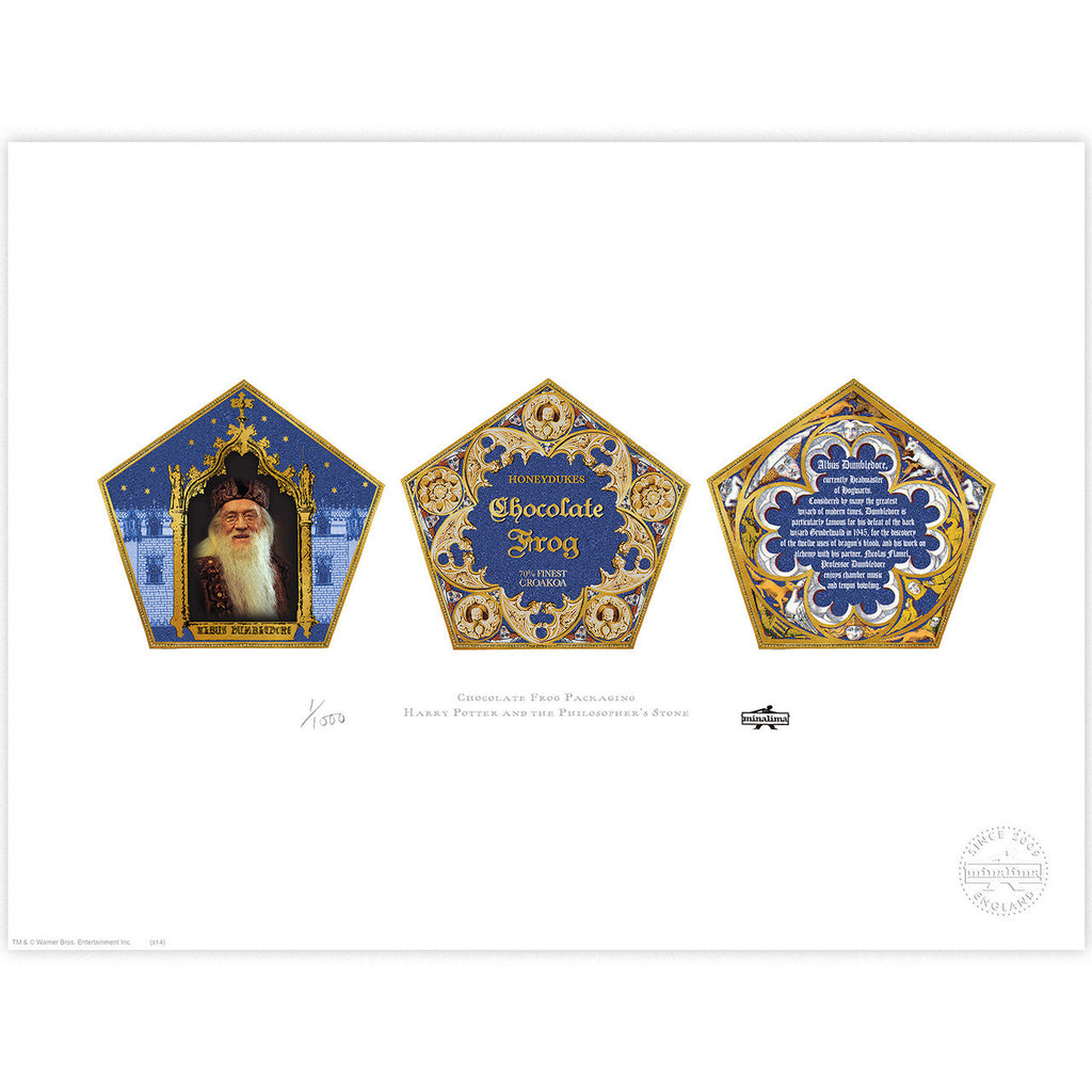 Chocolate Frog Packaging