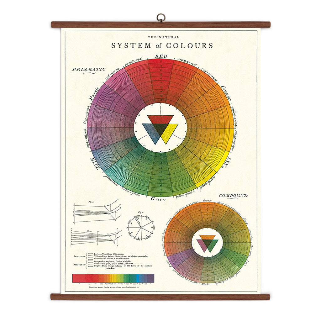 Colour Wheel Vintage School Chart