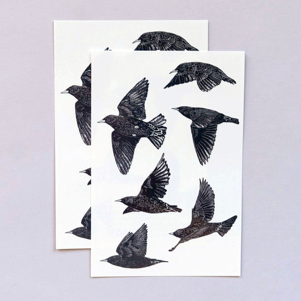 European Starlings Temporary Tattoo Sheets, set of 2