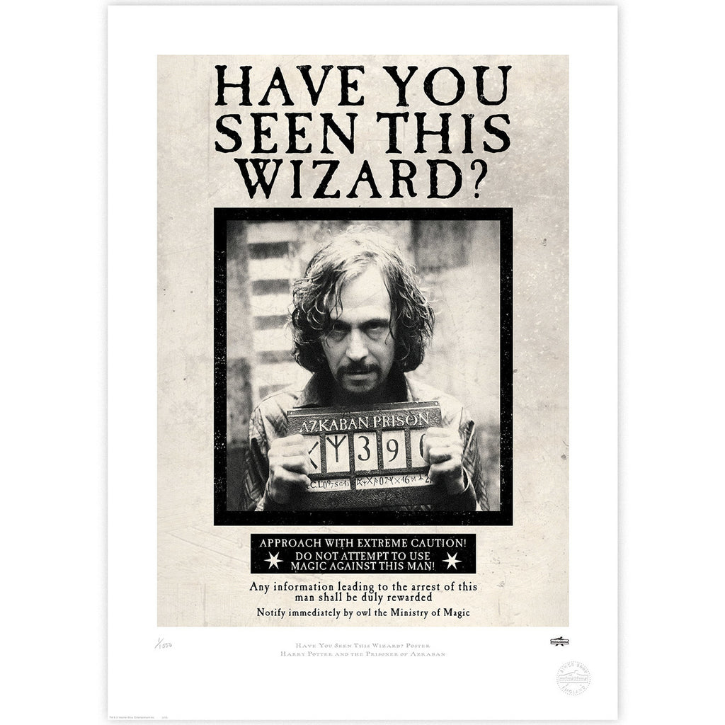 Have You Seen This Wizard? Poster Notice
