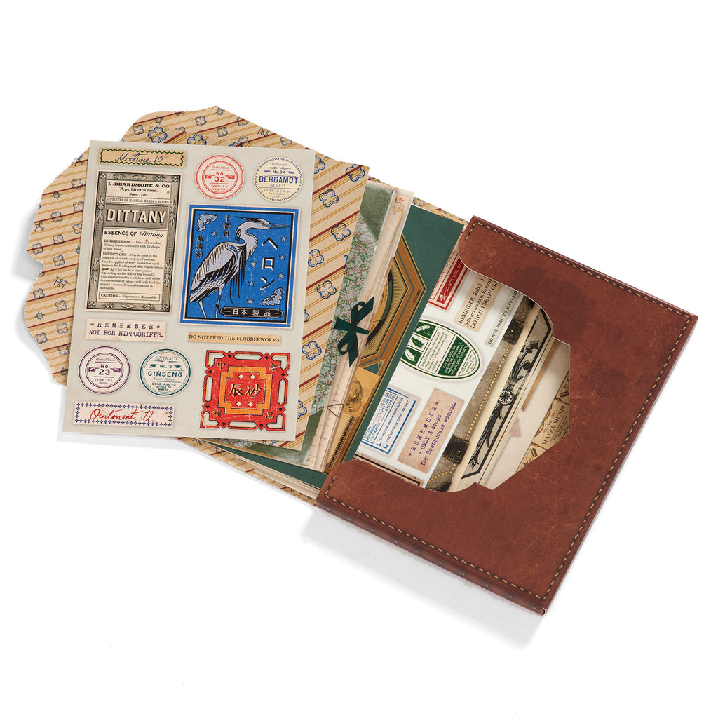 Newt's Magical Case Postcards