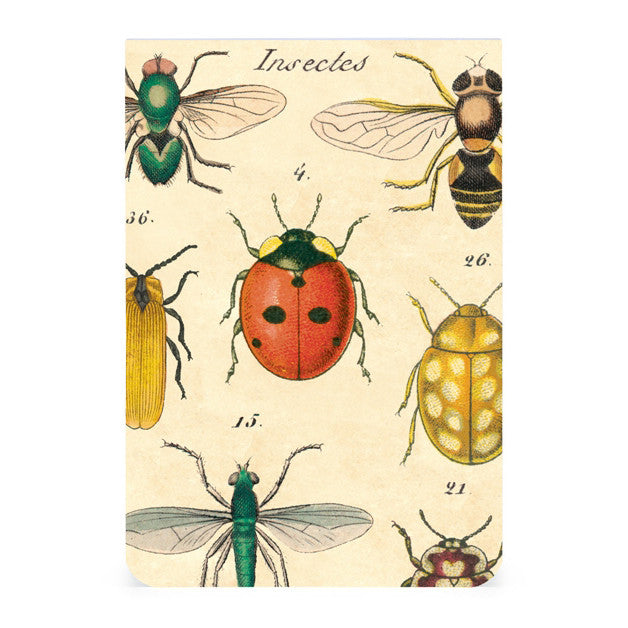 Pocket Notebooks, set of 2 - Insects