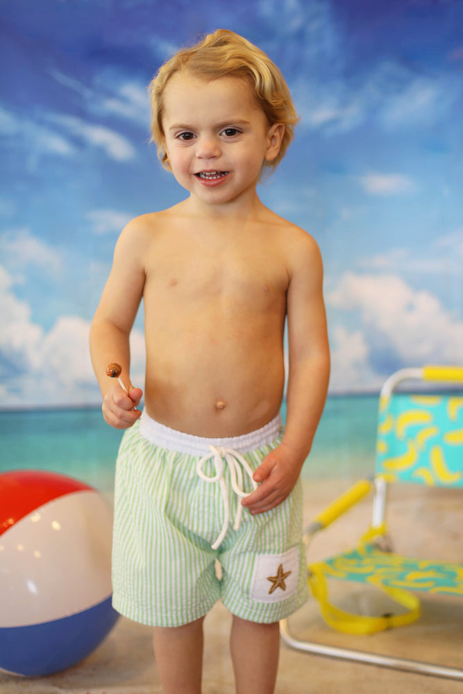 Starfish Smocked Light Green Seersucker Swim Shorts