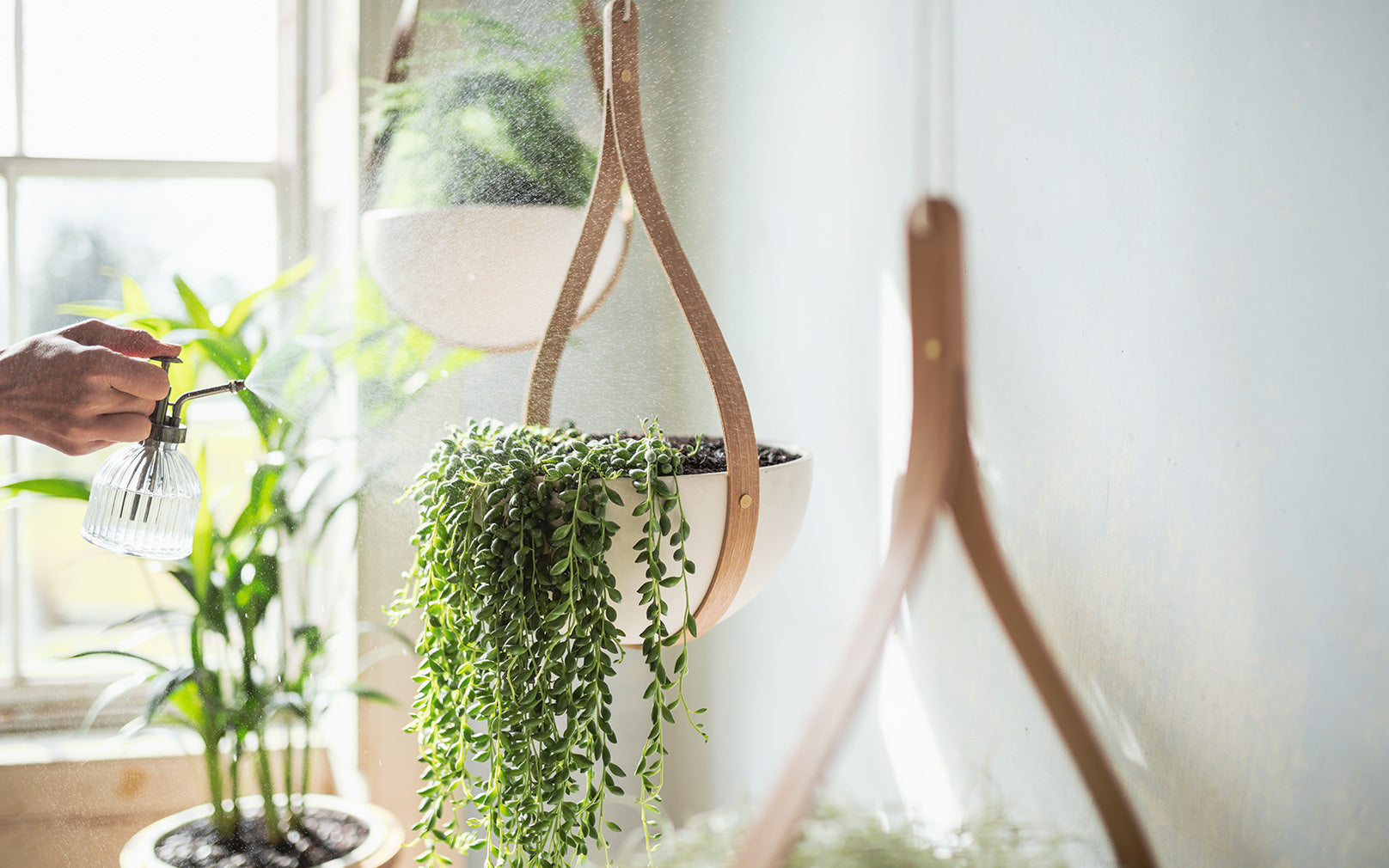 Morvah Hanging Planter