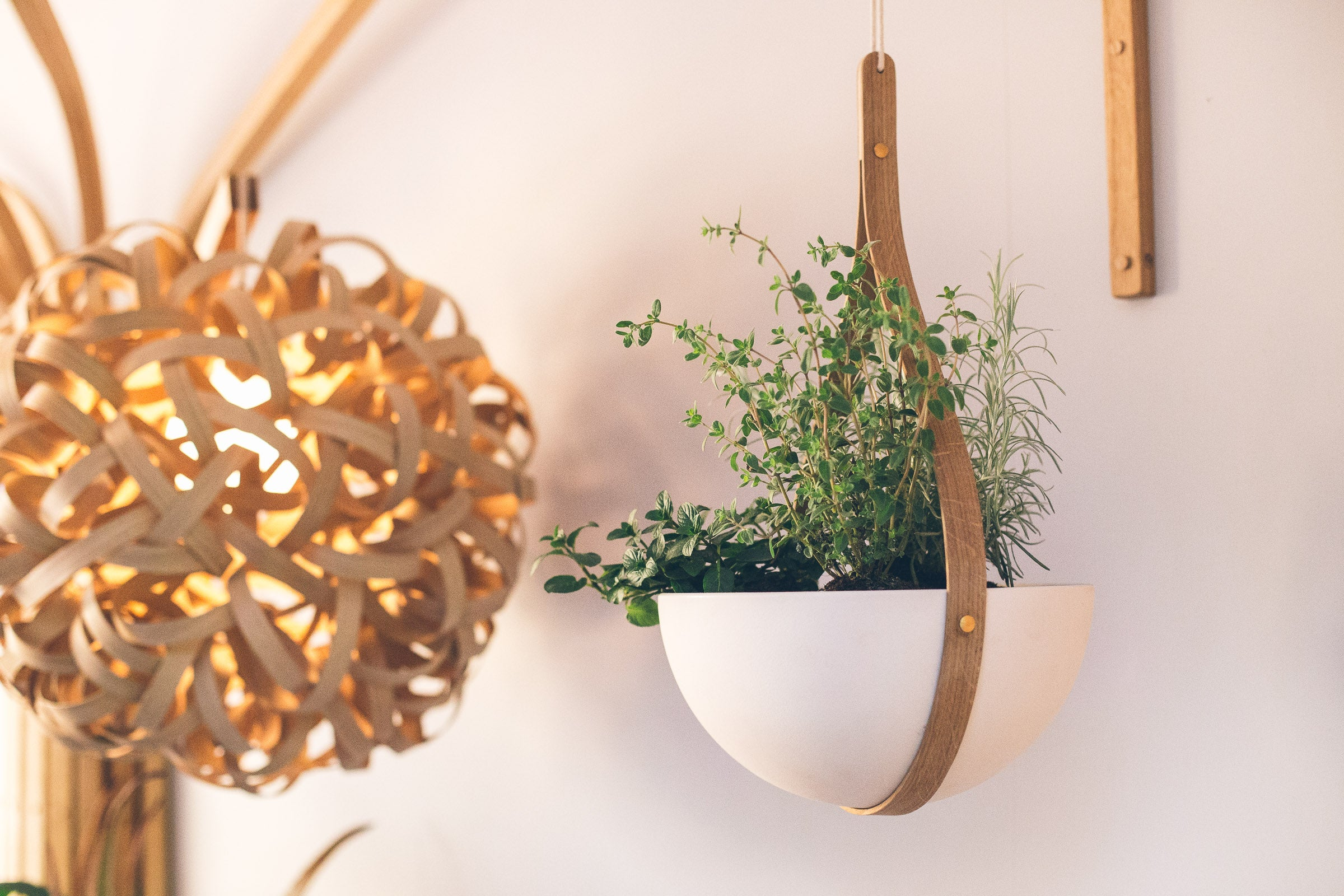 Morvah ceiling hanging planters