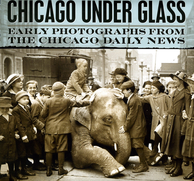 Chicago Under Glass:  Early Photographs from the Chicago Daily News