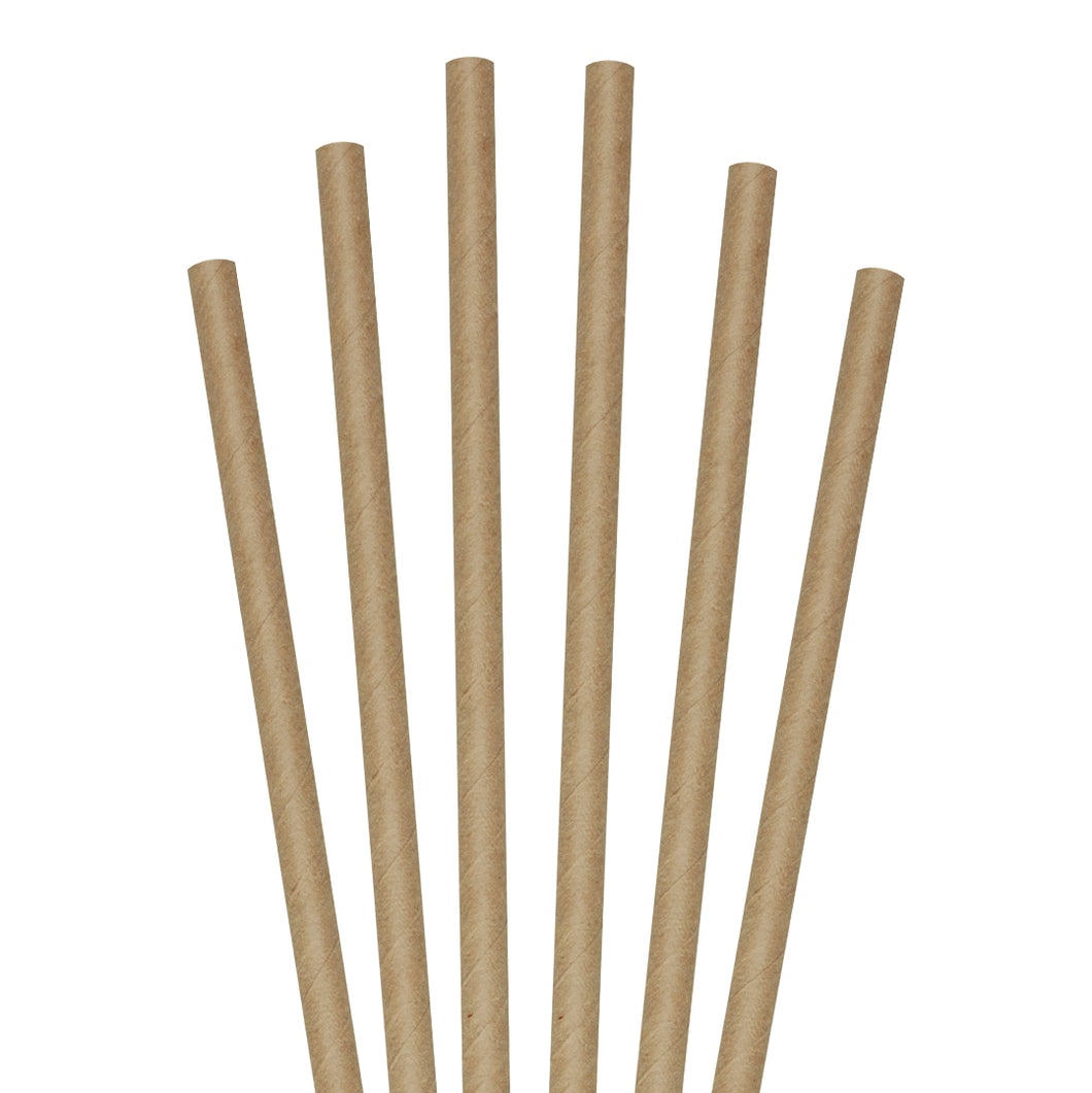 1888 Heavy-Duty Paper Drinking Straws (Pack of 24)