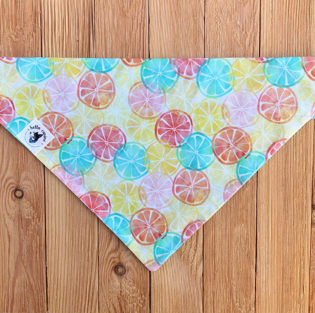 Summertime Citrus Dog Bandana