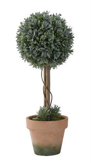 Faux Boxwood in Clay Pot