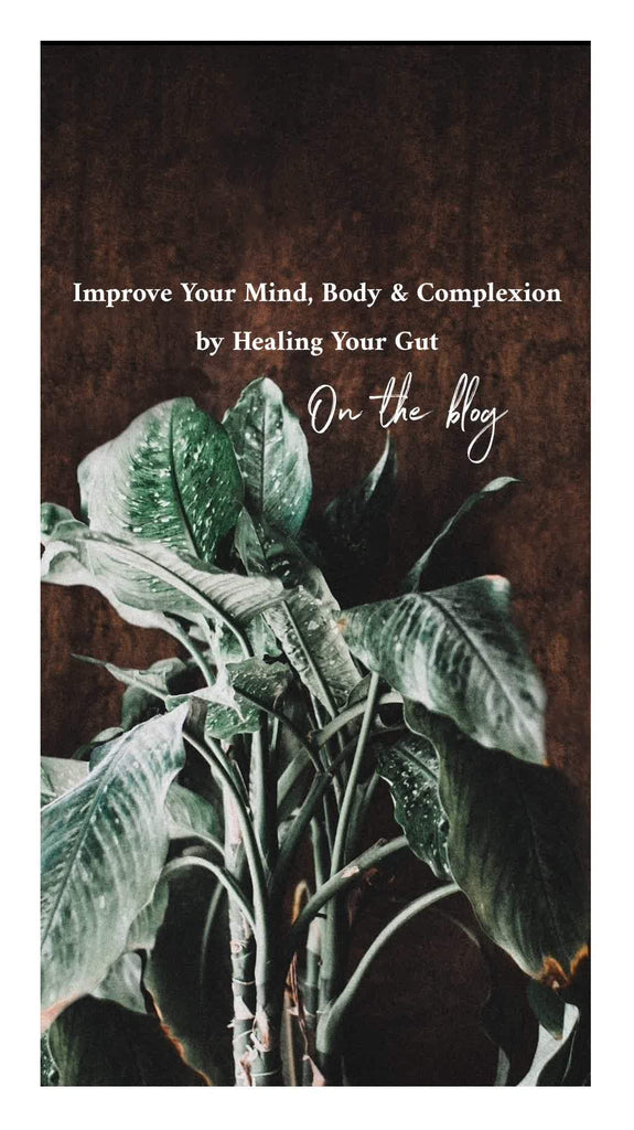 Improve your Mind, Body & Complexion by Healing your Gut