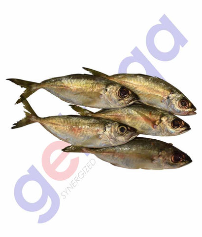 get Mackerel (Ayala kana) at getit.qa exclusively