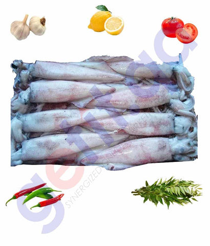Buy Squid Small Best Price Online in Doha Qatar