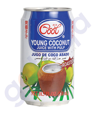 BUY ICE COOL ROASTED COCONUT JUICE 310ML IN QATAR