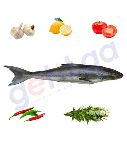 SIKEN (MODHA)- (BIG)سكن - COBIA -(Portion/Sliced)