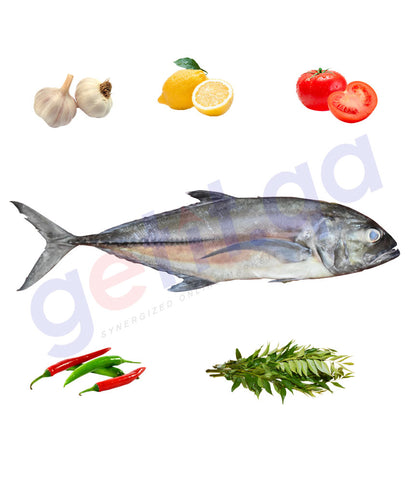Shop Online for Fresh Fish Malabar Travally (VATTA) in Qatar