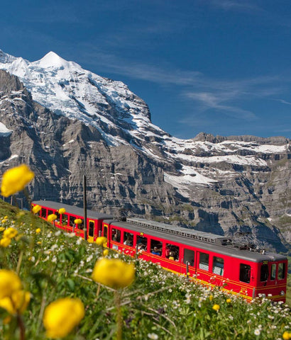 Request for FREE Quote- SWITZERLAND LUXURY TRAIN AND COACH TOUR