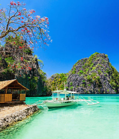 Request for FREE Quote- BEAUTY OF PHILLIPINES
