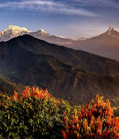 Request for FREE Quote-  ADVENTUROUS NEPAL