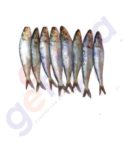 Sardine - Mathi -  Big(Oman) Frozen 1Kg (CLEANED ONLY 3KG PER ORDER)