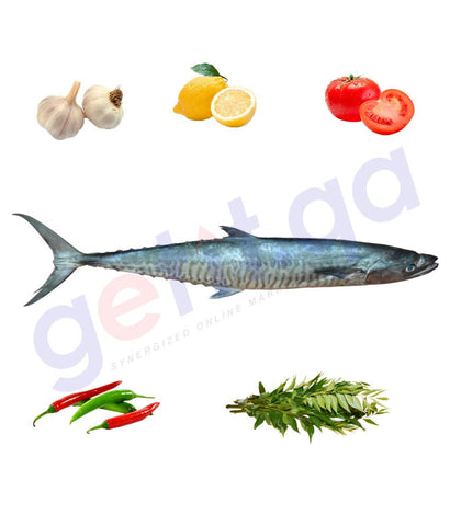 Fresh Fish - A. KING FISH(BIG )- كنعد -  CHANAD(12kg Above)
