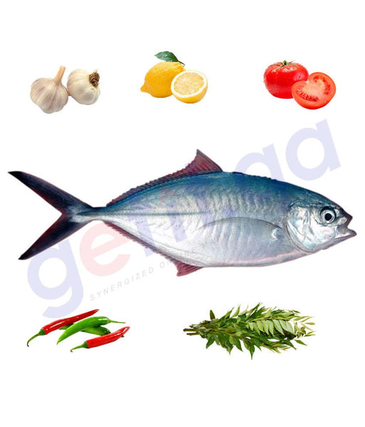 Fresh Fish - BASSAR - بسار - RAINBOW RUNNER  (WHOLE FISH )