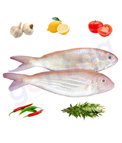 Fresh Fish - BASSI - باسى - JAPANESE THREADFIN  1KG