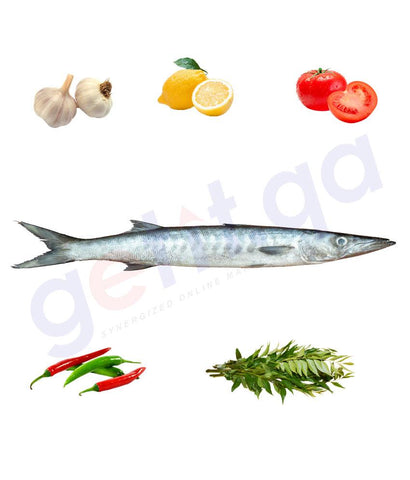 Fresh Fish - GIDD - جد - YELLOW TAIL BARRACUDA(small) 1kg