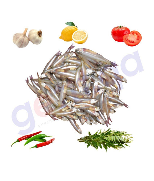 Fresh Fish - INDIAN ANCHOVY - Kozhuva