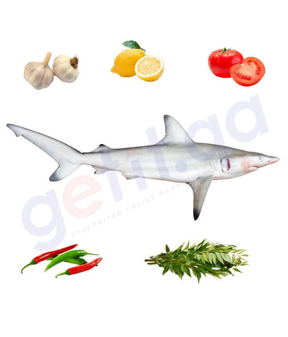 Fresh Fish - JARJOR - جرجور - WHITECHEEK SHARK 1KG